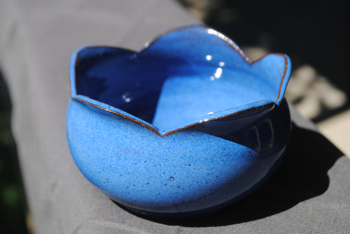 Indigo Blueberry Bowl