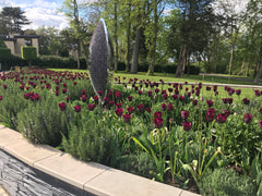 Tulips and Salvia surround David Harber Slate Sculpture