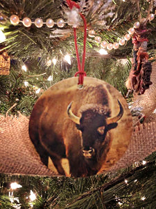 Where the Buffalo Roam Christmas Ornament