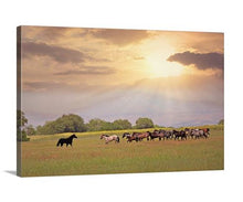 Load image into Gallery viewer, At First Sight Horse Canvas Wall Art