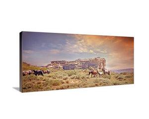 Getting Aquainted Horse Canvas Wall Art