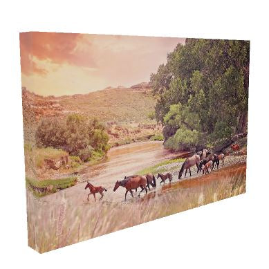 Golden Crossing Horse Canvas Wall Art