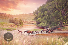 Load image into Gallery viewer, Golden Crossing Horse Canvas Wall Art