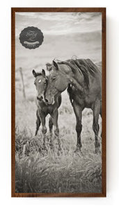 Kindred Horse Western Canvas Wall Art