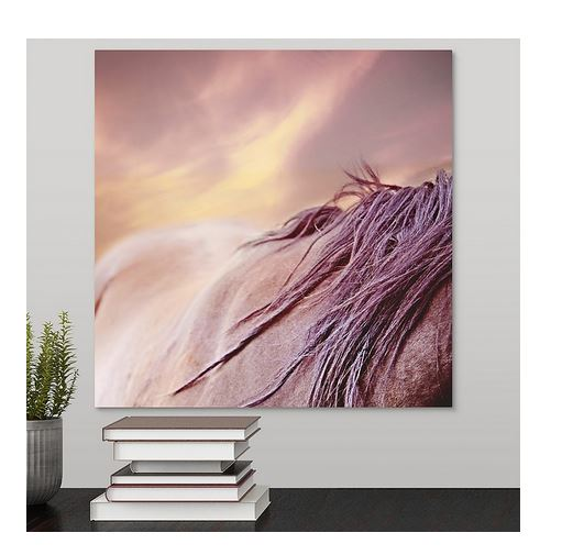 Mystical Mane Horse Canvas Wall Art