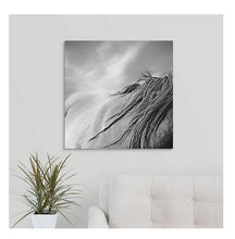Load image into Gallery viewer, Mystical Mane Horse Canvas Wall Art