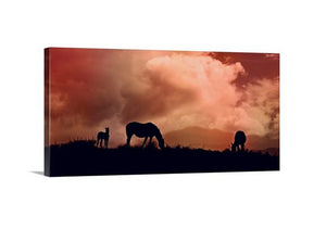 Sunset Silhouette Canvas Horse Wall Art