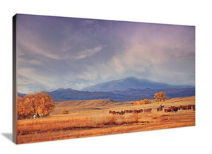 The View from Home Canvas Wall Art