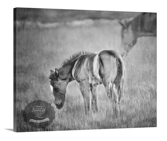 Velvet Spring Horse Canvas Wall Art Decor