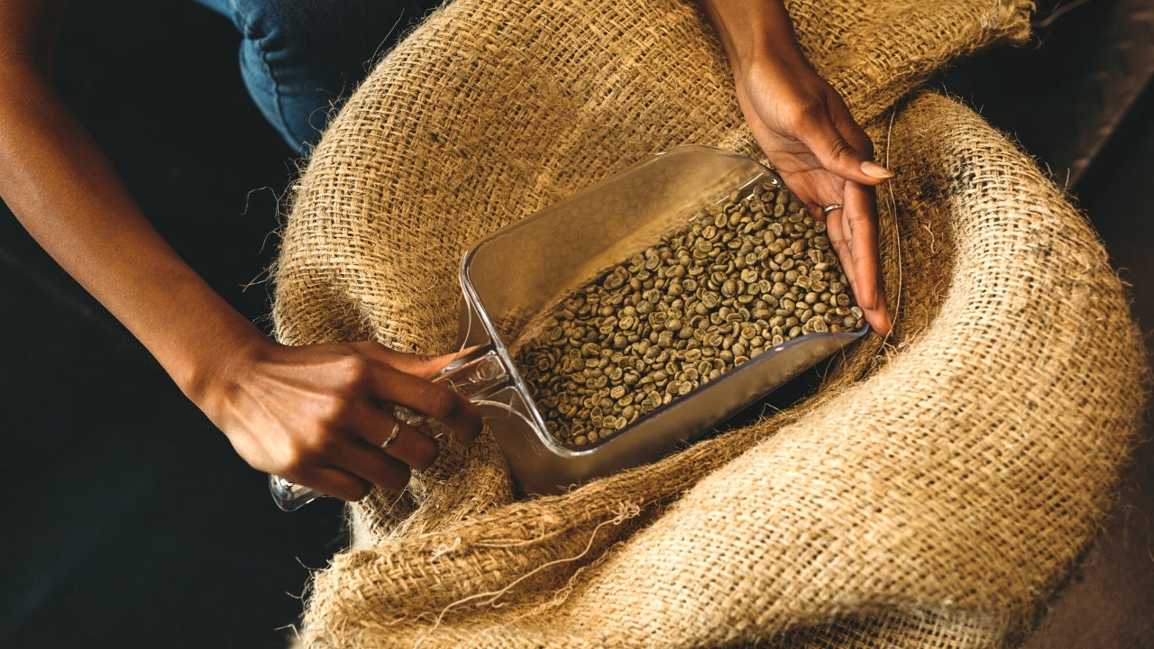 Indian Coffee sourced from best regions on India