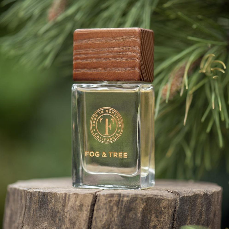 Discover Fog & Tree EDP Fog & Tree