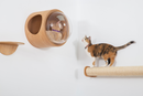 MyZoo Cylinder Replacement, Accessories: Extend Cat scratcher, Scratching Post to Two Times Length