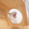 MyZoo BusyCat Wall Mounted Cat Bed
