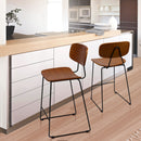 Hesper 25 in. bar stool for Living room and Dining room(Set of 2)