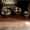 Enhanced Pet Bowl For English Bulldog