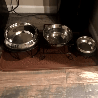 Enhanced Pet Bowl + Stand