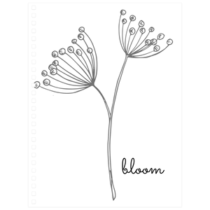 Bloom Notebooks