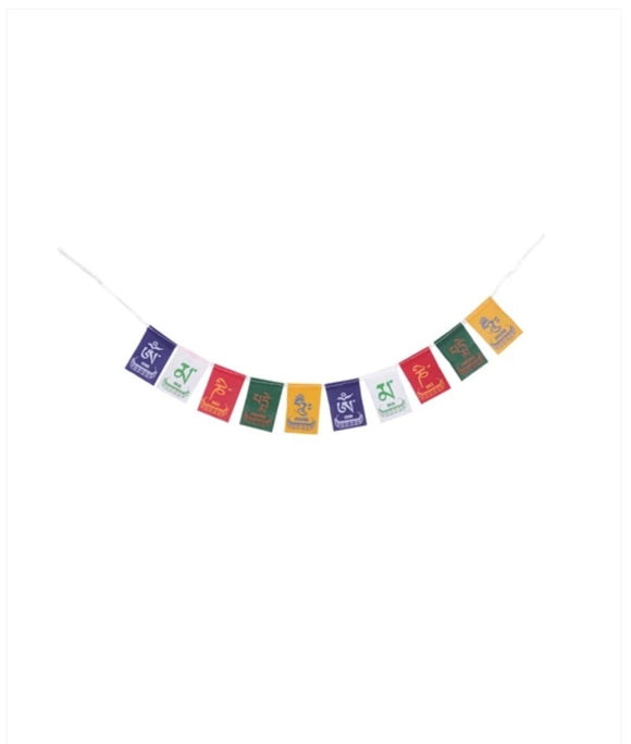 Ladakh Prayer Flag