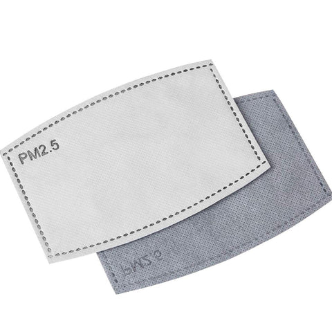 PM2.5 Filter Replacement 10 PACK