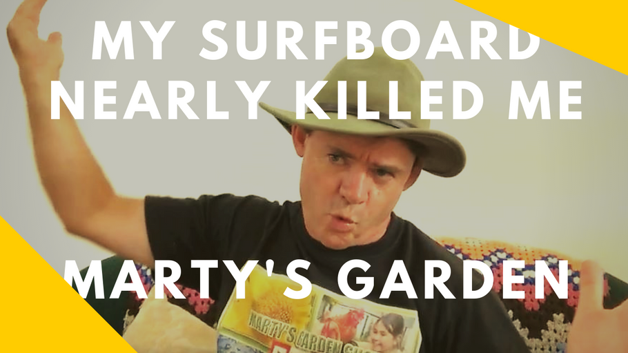 My Surfboard Nearly Killed Me Plus Updates for Martys Garden
