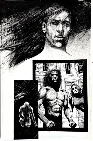 Alex Maleev Original Art Crow (1990's) Page Reference 46