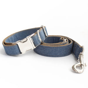 Designer Leash & Collar