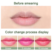 Load image into Gallery viewer, Waterproof Aloe Vera Lip Stick