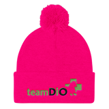 Draw It Out Pom Pom Knit Cap