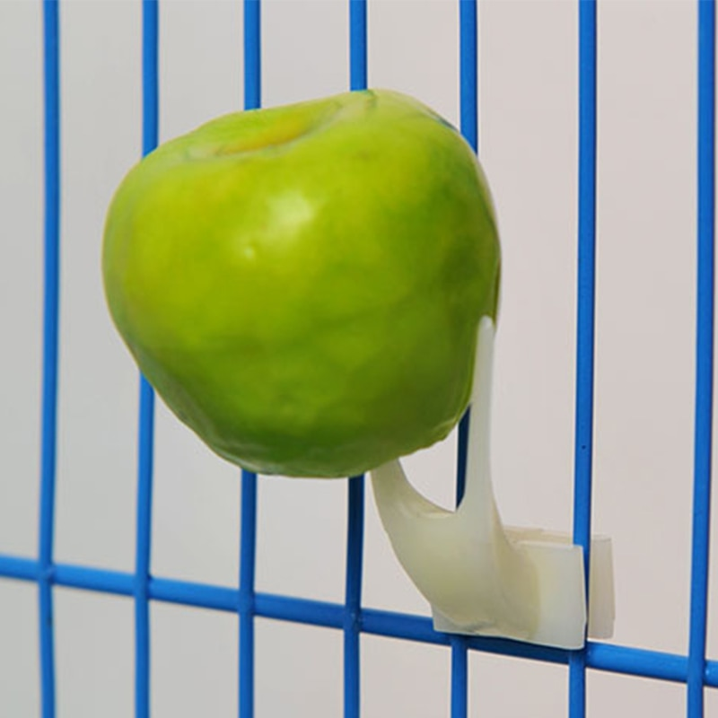 Plastic Fruit and Food Feeding Fork for Pet Cage - YourSmartPets