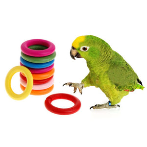 Wooden Colorful Rings Parrot Toy - YourSmartPets