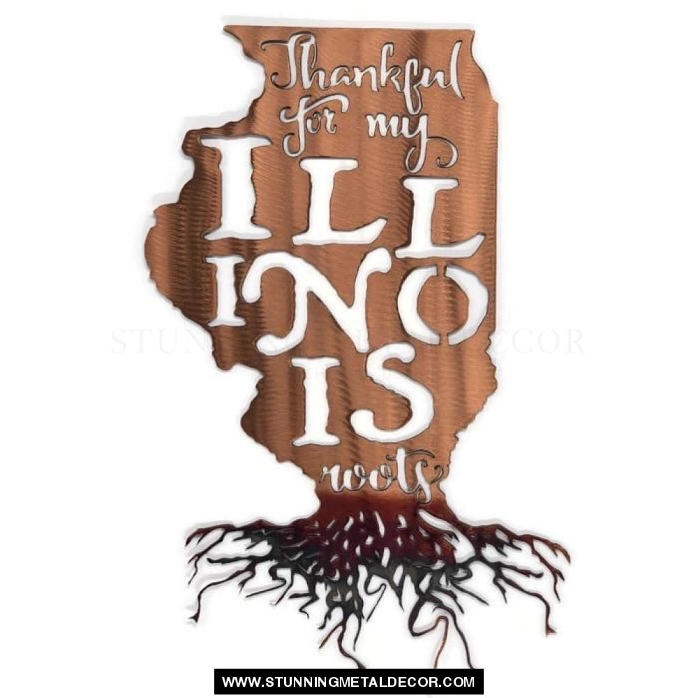 Thankful for my Roots - Illinois metal wall art