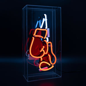 Locomocean Acrylic Box Neon Boxing Gloves