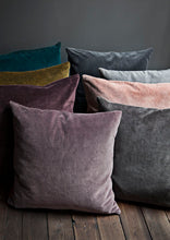 Cozy Living Soft Velvet Cushion COOL GREY