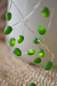 Teardrop Fairy Lights Jade ( Mains Powered)