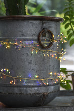 Colour Changing Cluster Fairy Lights