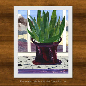 Sansevieria Scenery | Snake Plant Window Collage