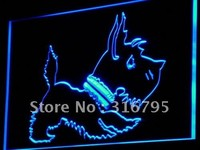 Old Fashioned Scottie Dog Shop Neon Sign (LED. Light)