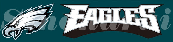 Philadelphia Eagles Helmet Tailgate Banners Flags 2*8ft Customized Hanging Flag 110g Knitted Polyester With Gromets 60*240CM
