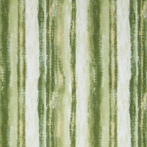 Orchid Shadows - Stripe (Green)