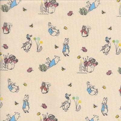 Peter Rabbit - Ditsy