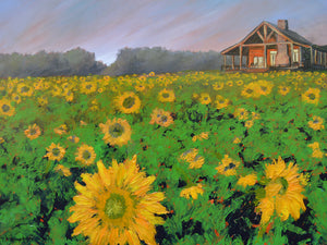 """Cabin in Sunflowers"" Giclee canvas print by Thomas Andrew - Thomasandrewartwork"