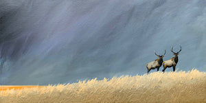 """Elk Together in the Wild"" series #3 / print by Thomas Andrew - Thomasandrewartwork"