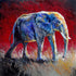 """Marching into the Light"" /Red (Elephant series) - Signed print by Thomas Andrew"