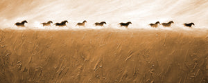 """Morning Run"" Giclee canvas print by Thomas Andrew - Thomasandrewartwork"