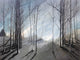 """Naked Trees #2"" Giclee canvas print by Thomas Andrew - Thomasandrewartwork"