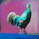 """Funky Rooster"" #4 / Giclee canvas print by Thomas Andrew"