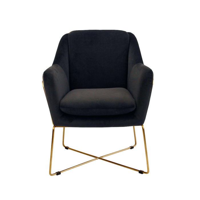 Milan Velvet Armchair - Black With Gold Frame