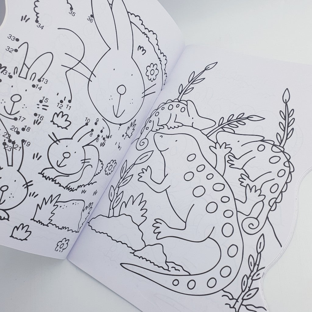 Perfect Pets Colouring Book (P)
