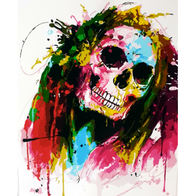 Paint Theropy Paint By Numbers Art Set Skull