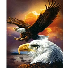 Paint Theropy Paint By Numbers Art Set Eagle